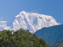 Fronte del sud del picco di montagna Annapurna III, Himalaya, Nepal Immagini Stock Libere da Diritti