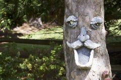 Fronte dell'albero dell'uomo anziano fotografia stock