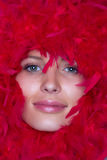 Fronte della ragazza nel telaio delle piume rosse Fotografie Stock Libere da Diritti