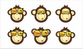 Fronte della scimmia in occhiali da sole Immagini Stock
