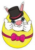 Fronte di coniglio in cappello sull'uovo Immagini Stock Libere da Diritti