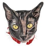 Fronte disegnato a mano del gattino Fotografia Stock Libera da Diritti