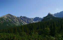 Fronte in montagne Immagini Stock