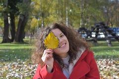 Fronte nascondentesi della bella giovane donna dietro la foglia gialla di autunno Immagine Stock