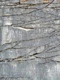 Fronte naturale della roccia con la priorità bassa di fessure Fotografie Stock