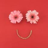 Fronte sorridente Fotografie Stock