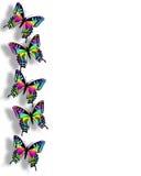 Frontera 3D de la mariposa del arco iris Fotografía de archivo