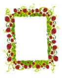 Frontera abstracta de la vid de Rose Fotografía de archivo libre de regalías