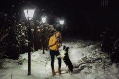 Frontera blanco y negro linda mullida adorable colly que es entrenada y que acaricia a la muchacha en un parque luces y arbustos  foto de archivo