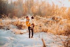 Frontera blanco y negro linda mullida adorable colly que es entrenada y que acaricia a la muchacha en un parque luces y arbustos  imagenes de archivo