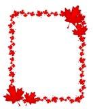 Frontera canadiense de la hoja de arce del día Imagen de archivo libre de regalías
