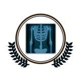 frontera circular con la rama de olivo y pantalla con la radiografía de huesos libre illustration