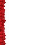 Frontera color de rosa del rojo imagen de archivo