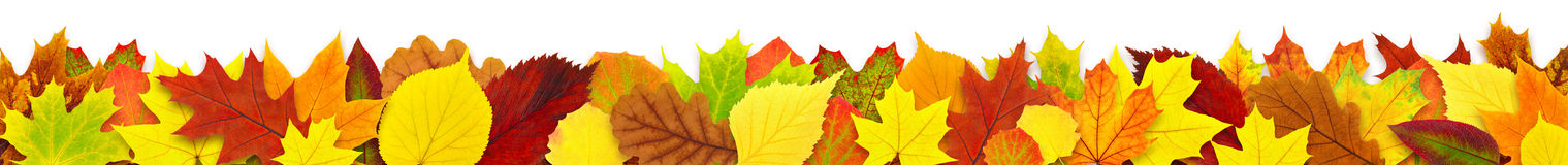 Frontera colorida de las hojas de otoño Imagen de archivo
