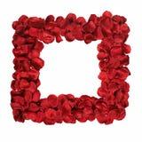 Frontera con los pétalos de rosas rojas Fotos de archivo libres de regalías