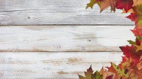 Frontera correcta del follaje del otoño en los tableros de madera blancos rústicos Fotos de archivo
