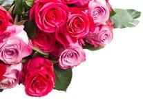 Frontera de flores rosadas Fotografía de archivo libre de regalías