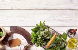 Frontera de hierbas y del cuchillo culinarios frescos del mezzaluna Imágenes de archivo libres de regalías