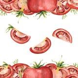 Frontera de la acuarela con los tomates rojos enteros y del corte ilustración del vector