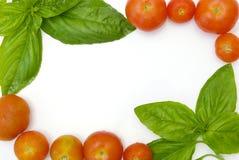 Frontera de la albahaca y del tomate Fotografía de archivo