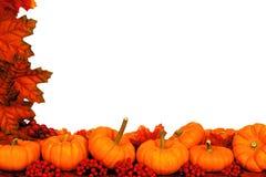 Frontera de la esquina del otoño Fotos de archivo libres de regalías