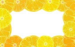 Frontera de la fruta cítrica Fotografía de archivo