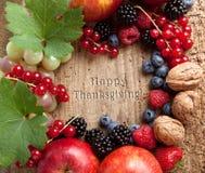 Frontera de la fruta de la acción de gracias Fotografía de archivo