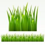 Frontera de la hierba stock de ilustración