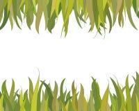 Frontera de la hierba Imagen de archivo libre de regalías