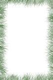 Frontera de la hierba Imagen de archivo