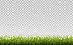 Frontera de la hierba verde, aislada en fondo transparente, con la malla de la pendiente Imágenes de archivo libres de regalías