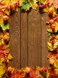 Frontera de la hoja del otoño Imágenes de archivo libres de regalías