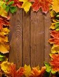 Frontera de la hoja del otoño Imagen de archivo libre de regalías