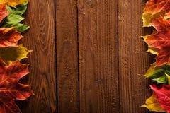 Frontera de la hoja del otoño Foto de archivo libre de regalías