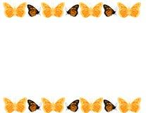 Frontera de la mariposa Fotografía de archivo libre de regalías