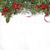 Frontera de la Navidad con el abeto, el acebo y la poinsetia en el CCB blanco Fotografía de archivo