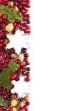 Frontera de la Navidad con los arándanos, la rama spruce y el cortador de la galleta Fotografía de archivo