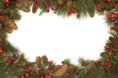 Frontera de la Navidad de las ramificaciones del pino Imagen de archivo libre de regalías