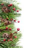 Frontera de la Navidad del cono y de la baya Fotografía de archivo
