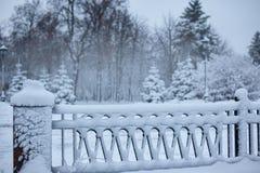 Frontera de la nieve en el parque con el espacio para el texto Foto de archivo libre de regalías