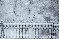 Frontera de la nieve en el parque con el espacio para el texto Fotos de archivo libres de regalías