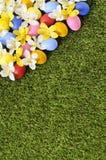 Frontera de la primavera de Pascua Fotografía de archivo
