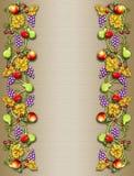 Frontera de la vid de la fruta y del veggie Imagenes de archivo