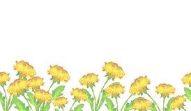 Frontera de las flores del diente de león stock de ilustración