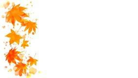 Frontera de las hojas de arce del otoño de la acuarela Foto de archivo libre de regalías