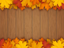 Frontera de las hojas de arce caidas en fondo de madera Imagenes de archivo
