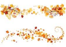 Frontera de las hojas de otoño Imagen de archivo libre de regalías