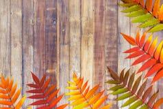 Frontera de las hojas de otoño en fondo de madera Fotografía de archivo libre de regalías