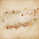 Frontera de las hojas y de las bellotas de otoño Fotografía de archivo