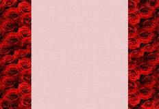Frontera de Rose Imagen de archivo libre de regalías